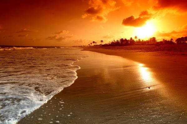 Лето закат пляж море пальмы солнце
